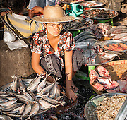 Fish seller at street market in Yangon (Myanmar)