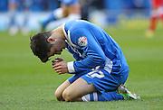 Brighton's Joao Teixeira celebrates his second goal during the Sky Bet Championship match between Brighton and Hove Albion and Birmingham City at the American Express Community Stadium, Brighton and Hove, England on 21 February 2015. Photo by Phil Duncan.