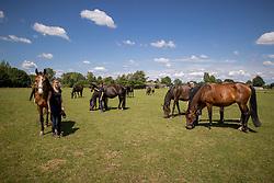Het Trichelhof, merries, veulens, Bries Karen, Bries Ronny, Mangelschots Chris<br /> het Trichelhof - Eindhout 2020<br /> © Hippo Foto - Dirk Caremans<br />  13/06/2020