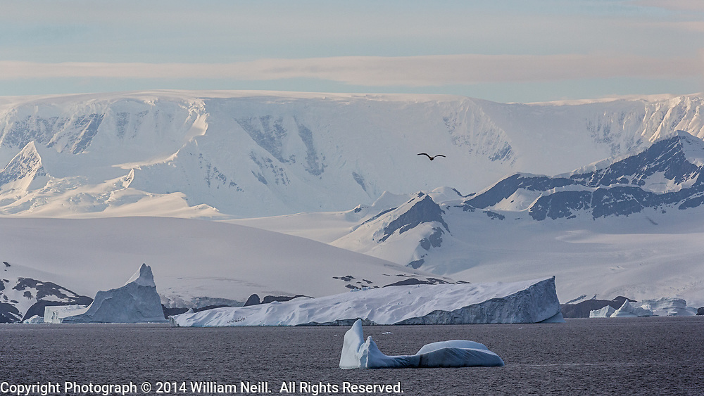 Icebergs, Gerlache Strait, Antarctic Peninsula, Antarctica 2014