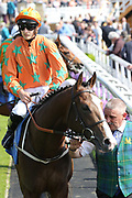 I AM A DREAMER (1) ridden by jockey Harry Bentley and trained by Mark Johnston leave the Parade Ring prior to winning The Yorkshire Regiment British EBF Novice Median Auction Stakes over 6f (£15,000)at York Racecourse, York, United Kingdom on 26 May 2018. Picture by Mick Atkins.