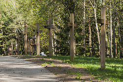 April 29, 2019 - Minsk, Minsk, Belarus - An woman prays near the memorial crosses in Kurapaty forest. Thousands of oppositors of the Stalin regime were executed by the NKVD police in the outskirts of Minsk, Belarus. (Credit Image: © Celestino Arce Lavin/ZUMA Wire)