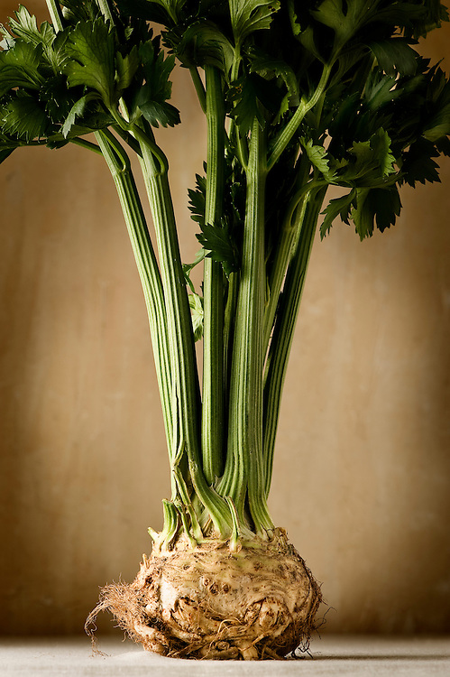 standing-turnip cabbage-on-a-kitchen-plane and brown background