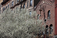 Little Italy District