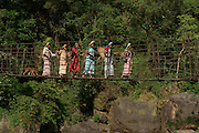 Suspension bridge over Simtung River<br /> Home of Living bridges or Root bridges (Ficus elastica)  Renee<br /> Khasi Tribe<br /> Nongriat, Khasi Hills<br /> Meghalaya, ne India<br /> Range: South China, NE India, Burma