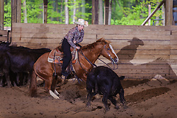 May 21, 2017 - Minshall Farm Cutting 4, held at Minshall Farms, Hillsburgh Ontario. The event was put on by the Ontario Cutting Horse Association. Riding in the 1,000 Amateur Class is Lisa Hall on Quixote Lena Pepto owned by the rider.