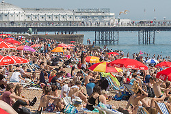 © Licensed to London News Pictures. 09/07/2017. Brighton, UK. Members of the public take advantage of the sunny weather to relax and sunbath on the beach in Brighton and Hove. Photo credit: Hugo Michiels/LNP
