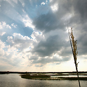 Sunbeams shine through a cloudy sky over a marsh at Wrightsville Beach.