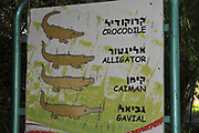 Crocodile breading farm at Hamat Gader, Golan Heights, Israel, Hamat Gader has 4 springs of mineral water. other attractions are an archaeological site with reconstructed Roman baths, which are regarded as the most impressive in the world; an amphitheatre and a 5th century synagogue. There is also a crocodile and reptile farm