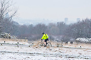 UNITED KINGDOM, London: 23 January 2019 A cyclist braves the cold in a frosty Richmond Park in London this morning. Temperatures sunk to below freezing yesterday causing snow flurries across the country. <br /> Rick Findler / Story Picture Agency