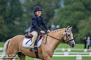 2018-03-04 Dressage Wellington Ribbon Day