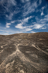 Barren landscape with sagebrush, Death Valley National Park, California, United States of America