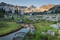 Mountains reflected in  creek, subalpine meadows of Marriott Basin, Coast Mountains British Columbia