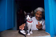 LENCOIS, BRAZIL,  A woman pets her cat in the window of her home in Lencois, Brazil.   Lencois is a town where many of Brazil's artists come to find inspiration.  The beautiful mountain setting also attracts many tourists.