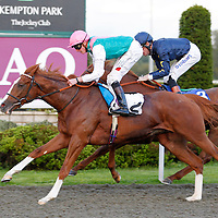 Jelly Fish and James Doyle winning the 6.15 race
