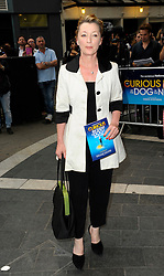 Image ©Licensed to i-Images Picture Agency. 08/07/2014. London, United Kingdom. Lesley Manville during the press night for 'The Curious Incident Of The Dog In The Night-Time' at Gielgud Theatre. Picture by Chris Joseph / i-Images