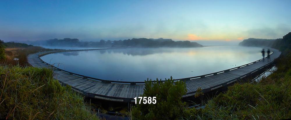 foggy morning on Spring Creek