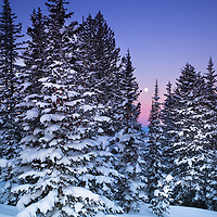 Aplenglow in the Wasatch Range in the Rocky Mountains of Utah, as a full moon sits above Mt. Superior after a fresh snowfall.