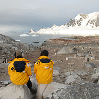 Antarctic Tourists