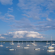 The harbor with huge cumulus clouds in a blue sky and lots of boats on moorings. Castine, Maine