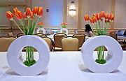 fresh wata's decor for aol conference