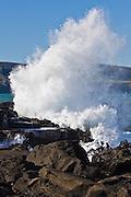 Curio Bay, crashing wave 3