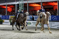 VAN HEEL Arne (NED), LÜTKEMEIER Fabienne (GER), BRÖRING-SPREHE Kristina (GER)<br /> Hagen - Horses and Dreams meets the Royal Kingdom of Jordan 2018<br /> Show - The Magic of Arabica<br /> 28. April 2018<br /> www.sportfotos-lafrentz.de/Stefan Lafrentz