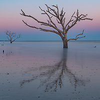 Boneyard Beach at sunset, Botany Bay, Edisto Island, South Carolina