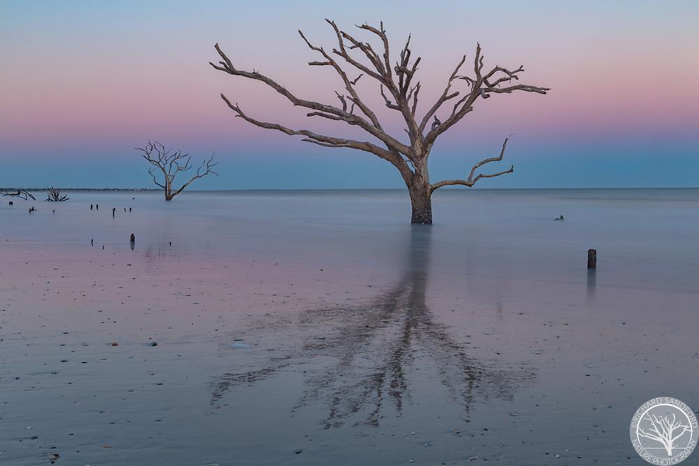 Boneyard Beach at sunset, Botany Bay, Edisto Island, South Carolina
