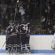 Union College players and supporters celebrate their second goal during their 2-0 win during the Yale Vs Union College, Men's College Ice Hockey game at Ingalls Rink, New Haven, Connecticut, USA. 28th February 2014. Photo Tim Clayton