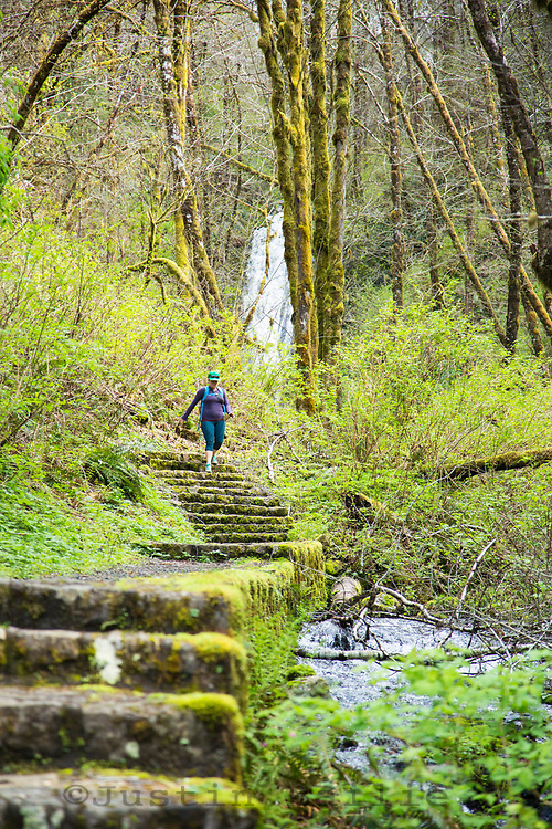 Hiking the Wilson River Trail near Tillamook, Oregon.