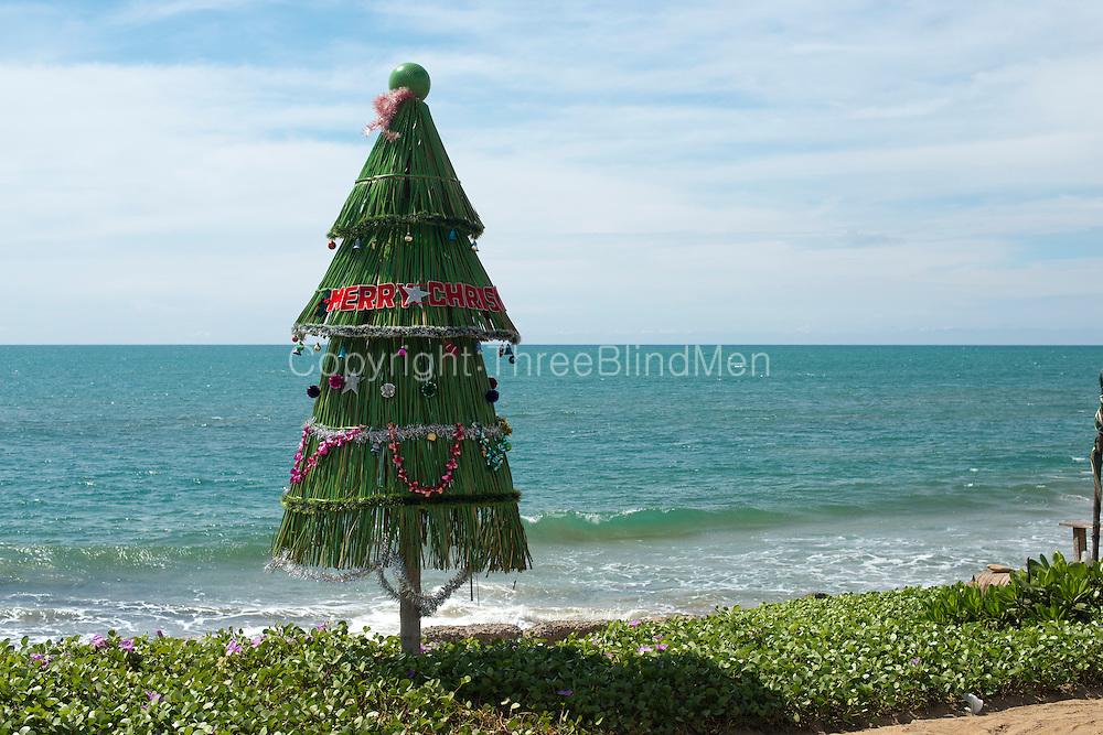 Christmas Tree on Christmas Day 2012. Coast road to Negombo from Pamunugama.