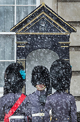 © Licensed to London News Pictures. 26/02/2018. London, UK. Members of the 1st Battalion Irish Guards are almost hidden in a snow shower at Buckingham Palace as a cold front sweeps in from the east - with heavy snow expected later in parts of the UK. Photo credit: Peter Macdiarmid/LNP