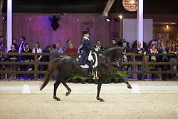 Seymour Tanya, (RSA), Ramoneur 6<br /> Grand Prix Freestyle Test<br /> CDI 4* Azelhof Lier 2015<br /> © Hippo Foto - Leanjo de Koster