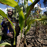 Catherine Hangama, 36, holds her baby in her maize field. Hangama sells her surplus maize to the FRA, the Food Reserve Agency. The FRA is the biggest supplier of local maize to the World Food Program.