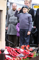 © under license to London News Pictures. File picture dated  14/11/10 . The town of Wootton Bassett in Wiltshire, famous for being the centre point of British Soldiers repatriated to the UK is to be given the title Royal. David Cameron announced at Prime Minister's Questions that the Queen had decided to single out the Wiltshire town for the rare honour. It will be the first town to gain the regal title in more than 100 years. Photo credit should read LNP... The Royal British Legion Wootton Bassett Field of Remembrance, Lydiard Park, Wiltshire, where members of the public read the names on crosses dedicated to service personnel who have lost their lives in battles.