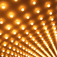 Picture of theater lights blurred out of focus at an angle. The lightbulbs are in rows and blurred and would be usable as a background for a design. This style of lighting is frequently known as casino lights or Broadway lights. Image is high resolution and is available as a stock photo, poster or print.