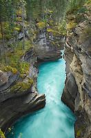 Athabasca Falls Canyon, Jasper National Park Alberta