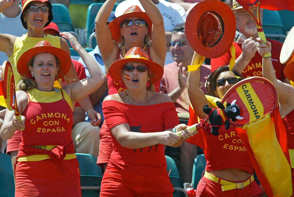 Fans of the Spanish national team in a game.