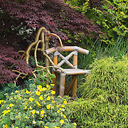 bamboo chair surrounded by potentilla cedar trees and Japanese maple