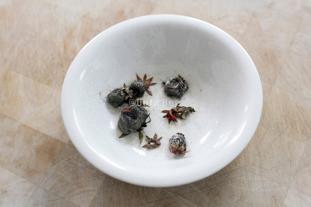 dried up strawberries in white porcelain bowl