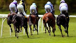 General view of runners and riders during the start of the RaceBets Money Back All Losers Oaks Trial Fillies' Stakes during the The Derby Trial Day at Lingfield Racecourse.