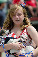 BAR HARBOR, MAINE, July 4, 2014. A young marcher in the Independence Day Parade carries her dog.