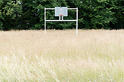 basketball hoop in field with long grass