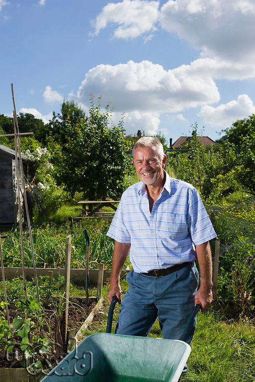 Senior man with wheel barrow gardening portrait