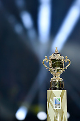 A general view of the Webb Ellis Cup - Mandatory byline: Patrick Khachfe/JMP - 07966 386802 - 31/10/2015 - RUGBY UNION - Twickenham Stadium - London, England - New Zealand v Australia - Rugby World Cup 2015 Final.