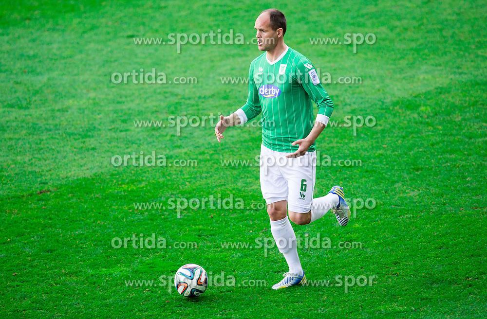 Aris Zarifovic #6 of Olimpija during football game between NK Olimpija Ljubljana and ND Triglav Kranj in 24th Round of Prva liga Telekom Slovenije 2013/14, on March 29, 2014 in SRC Stozice, Ljubljana, Slovenia. Photo by Vid Ponikvar / Sportida