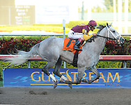 Awesome Maria captures the grade III Sabin stakes at Gulfstream Park on 2/19/11. Ridden by John Velazquez