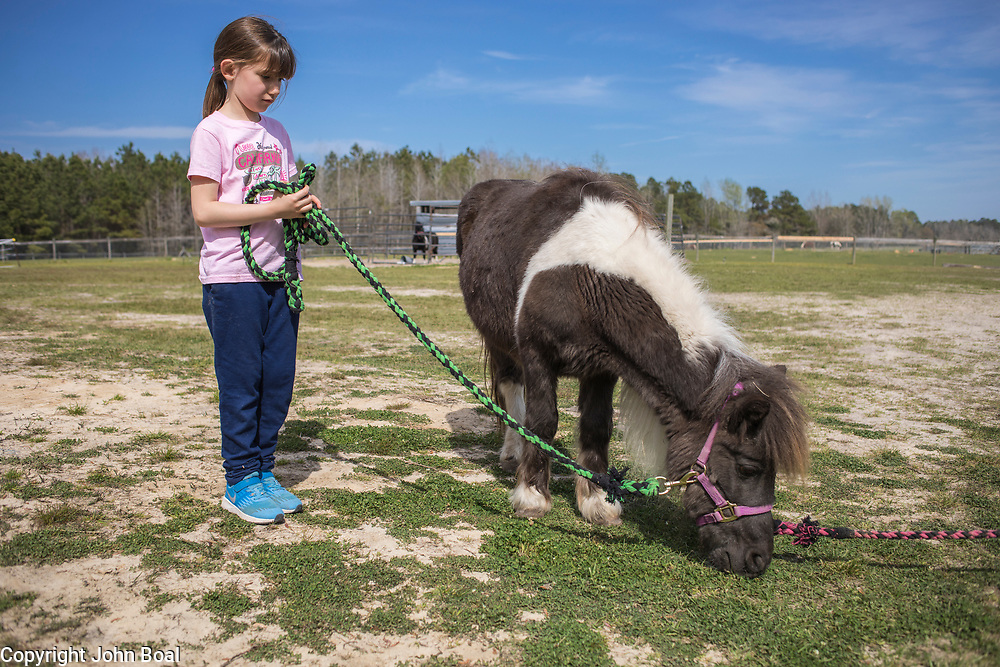 Eva and Garland Groves farm. Horses, pigs, donkeys and cat & dog. Monday, April 2, 2018. -- John Boal Photography