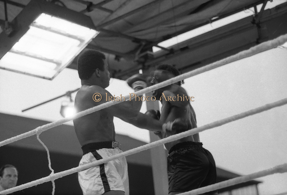 Ali vs Lewis Fight, Croke Park,Dublin.<br /> 1972.<br /> 19.07.1972.<br /> 07.19.1972.<br /> 19th July 1972.<br /> As part of his built up for a World Championship attempt against the current champion, 'Smokin' Joe Frazier,Muhammad Ali fought Al 'Blue' Lewis at Croke Park,Dublin,Ireland. Muhammad Ali won the fight with a TKO when the fight was stopped in the eleventh round.<br /> <br /> Image shows both fighters swinging wildly in trying to gain an advantage.